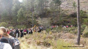 Festival Caminhadas 2015 Gerês